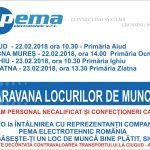 ANUNT ANGAJARE LA PEMA ELECTROTEHNIC ROMANIA